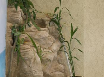Скала, декорированная искусственными и живыми растениями